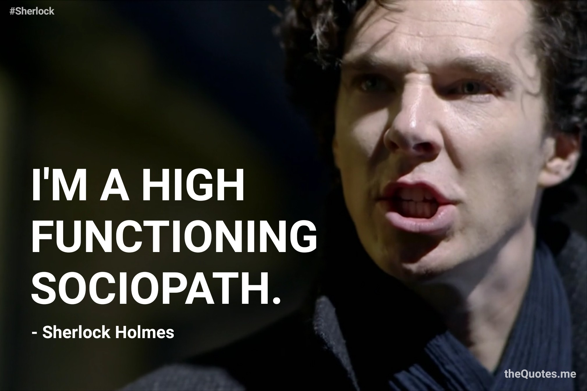 High Functioning Sociopath – The Quotes